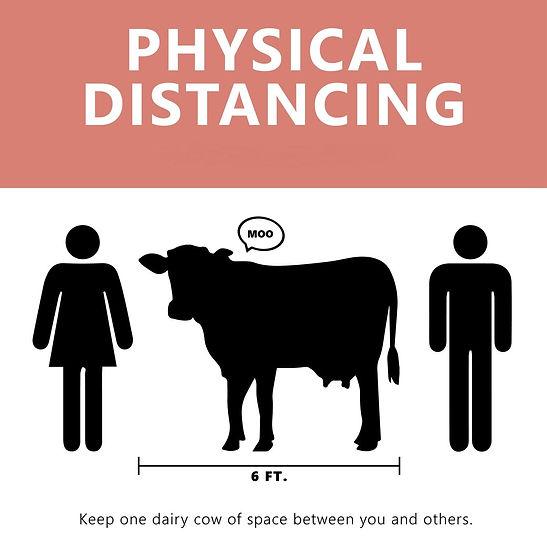 cowsign.jpg