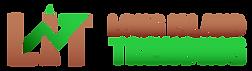 LIT_logoA_horizontal-gradient.png