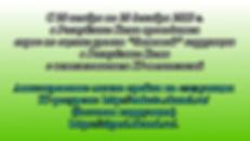 green-top-gradient-background.jpg