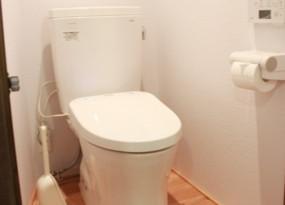 l_toilet.jpg