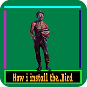 rfv1 bird.png