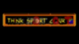 titlod1 t sport court.png