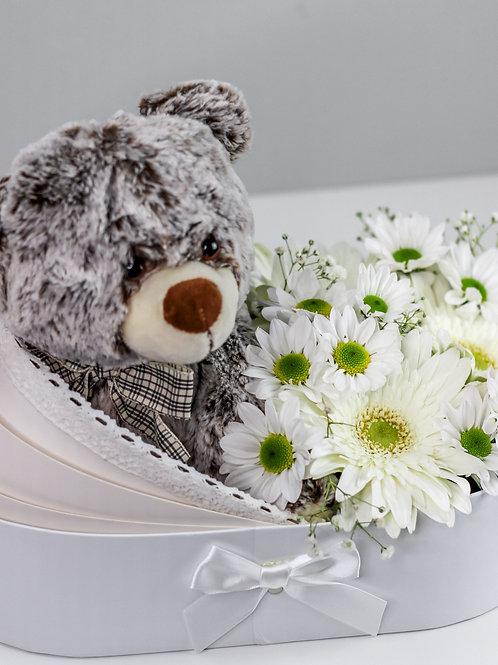 BABY BOX - BEAR