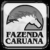 logocaruana3d.png
