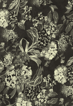 Black and White Flower Print