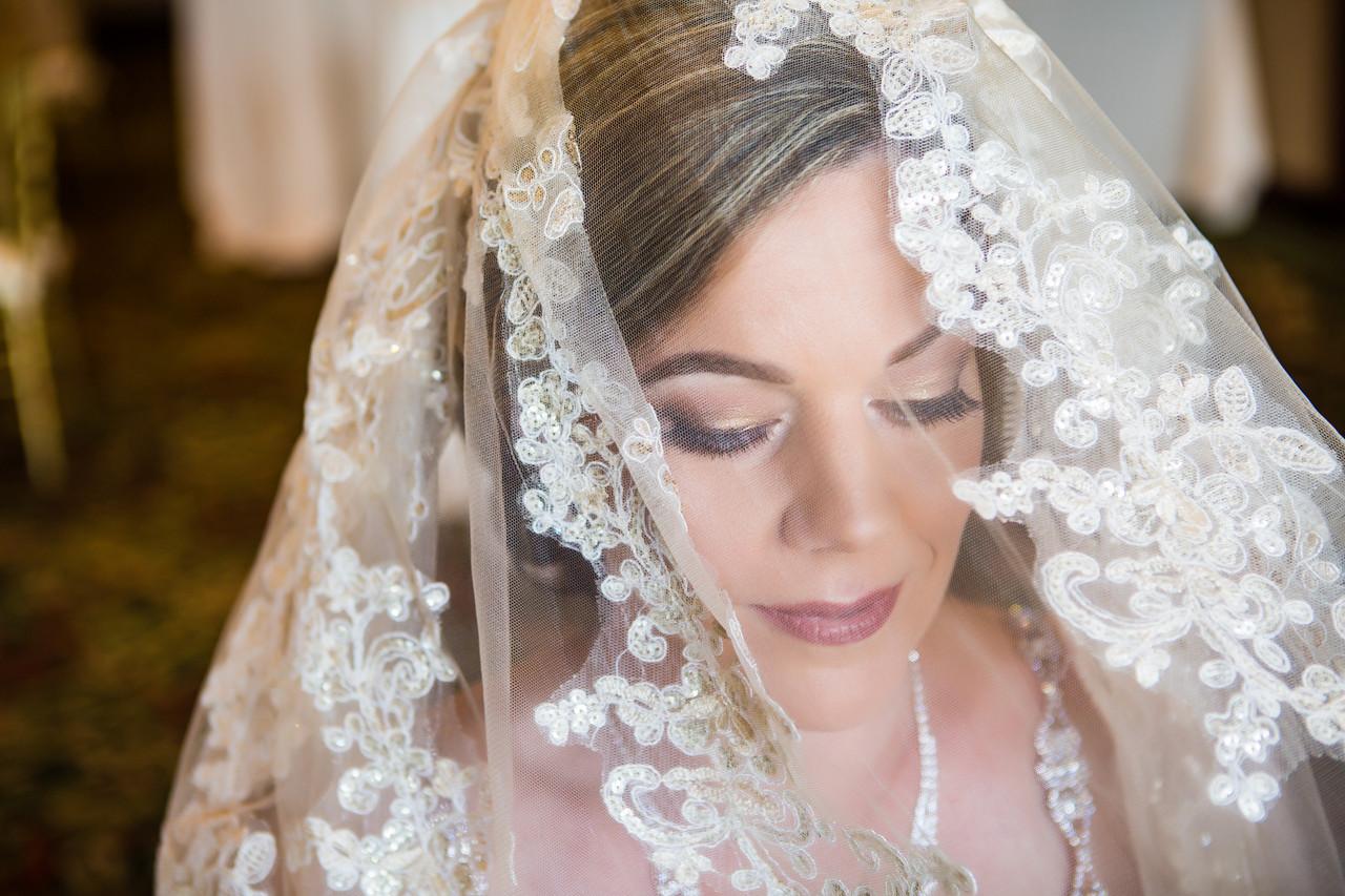 Best of wedding photography 2018, Berlynn Photography, San Diego Wedding Photography, Bride portrait up close under veil