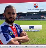 6 - IGOR.png