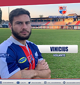 12 - VINICIUS.png