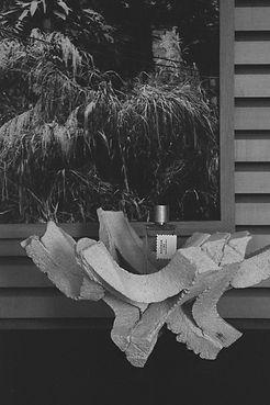 Introspection parfumerie