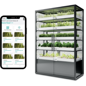 Hydroponics startup Babylon Micro-Farms raises $3m seed capital for US expansion