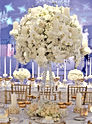 Social Chemistry Events, Event Coordination, Day of Coordination, Wedding Coordinator, So Cal Coordinator, Event Coordination