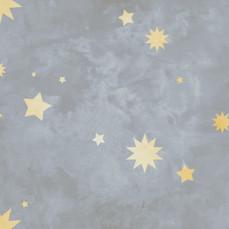 Celestial in Slate