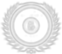 2019_Member_Badge_AIBPTransparent (1).pn