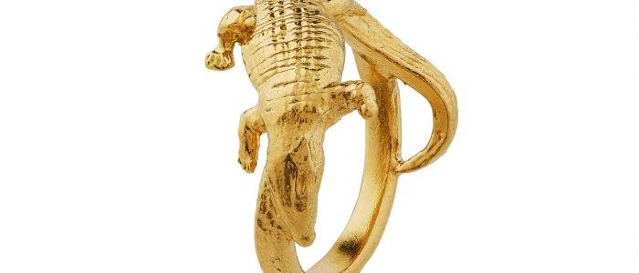 Wrapped Crocodile Amulet Ring