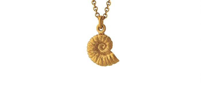 Ammonite Necklace Gold