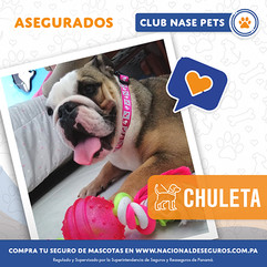 Chuleta.jpg