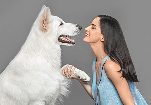 seguro-para-mascotas-panama-6.jpg