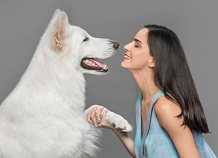 seguro-para-perros-panama-1.jpg