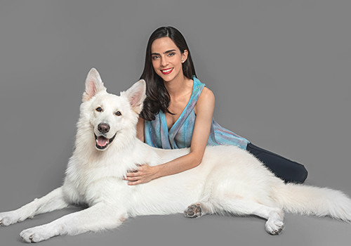 seguro-para-mascotas-panama-5.jpg