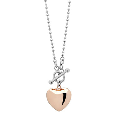 Two Tone Heart & Toggle Necklace 4515G
