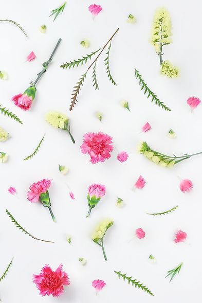 Gelb und Rosa Blumen