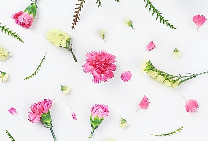 spring mini sessions charlotte nc