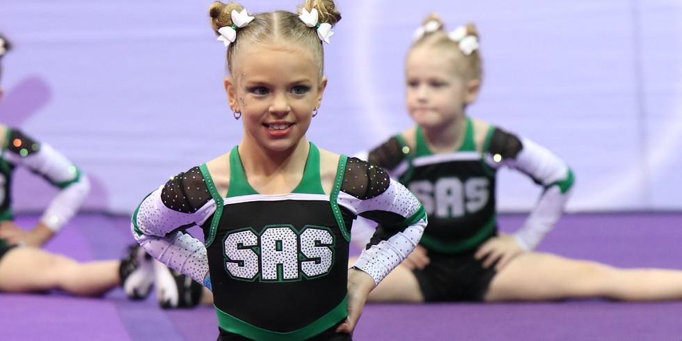 Cheerleading Introduction - Mini