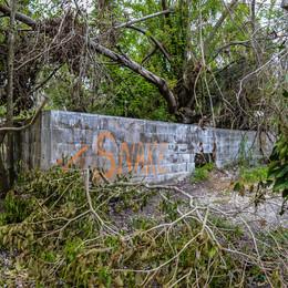 Everglades Gatorland
