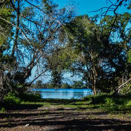 Everglades GatorlandEverglades Gatorland
