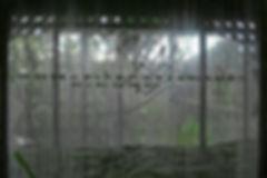 cypresskneemuseum006.jpg