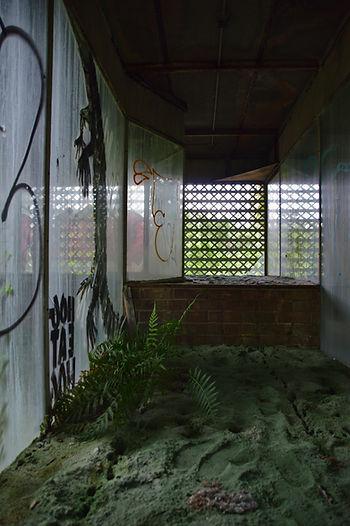 cypresskneemuseum017.jpg
