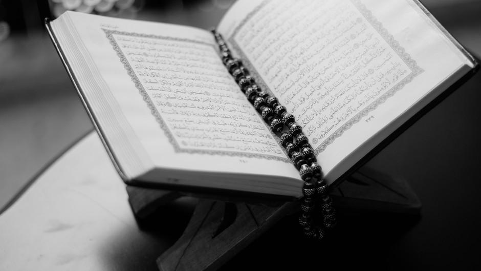 이슬람 혐오증 확산 (증오범죄 )