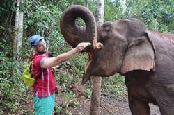 Elephant Jungle Paradise Park