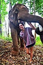 Elephant Paradise Park