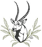 Thaba Manzi Weddings Logo Final.jpg