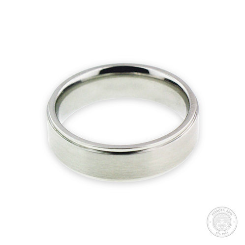 Silver Stainless Steel Ring (6mm)