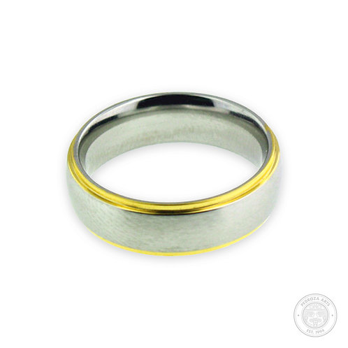 Silver with Gold Stainless Steel Ring (6mm)