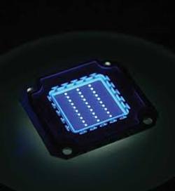 Microchip repuesto Microplus Germany