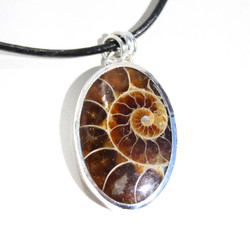 Ammonite necklace.