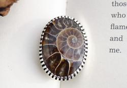 Ammonite Brooch