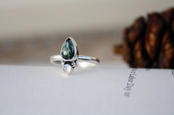 The Protected by the Forest Ring