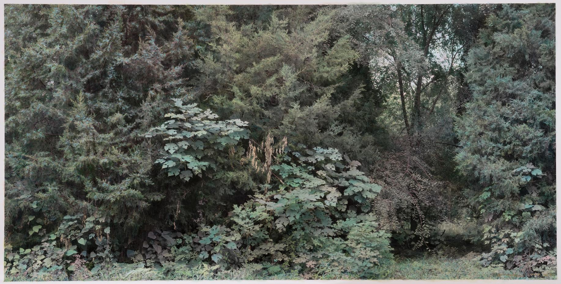 路边风景 | 2018年 | 摄影绘画 | 150×294cm
