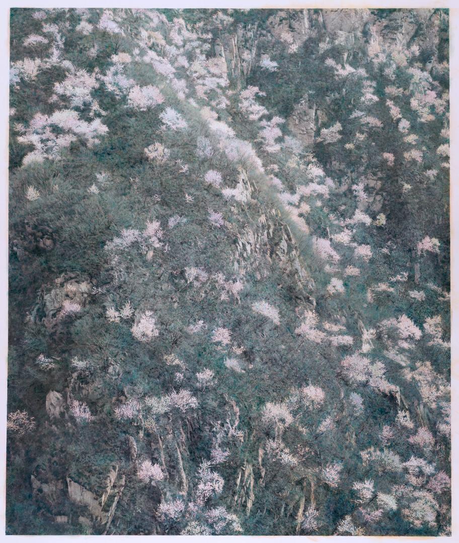 山花 | 2017年 | 摄影绘画 | 150×126cm