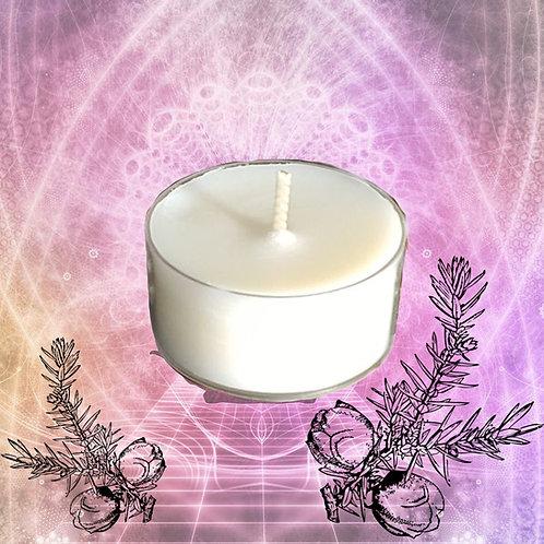 Bio Duft-Teelichter Energy Spirit 5h Stunden 12 Stück