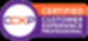 CCXP-Logo1.png