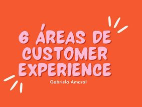 Aprendizados Práticos Atuando nas 6 Áreas de Customer Experience