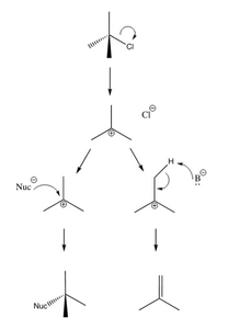 SN1/E1 reactions
