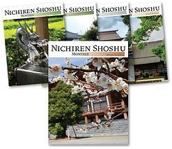 NSM-collage.png