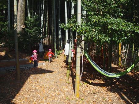 竹林で遊びました