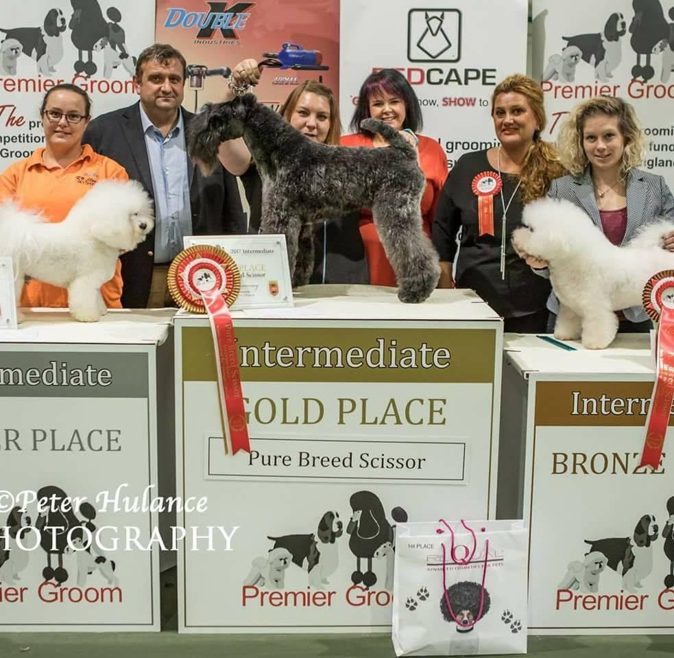 1st place at Premiergroom 2017